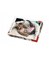 Puzzle Veselé kotě 1000 dílků 68,3x48cm v krabici 40x27x6cm