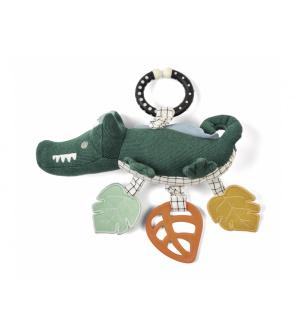 Krokodýl s aktivitami