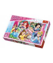Puzzle Princezny koláž 100 dílků 41x27,5cm v krabici 29x20x4cm